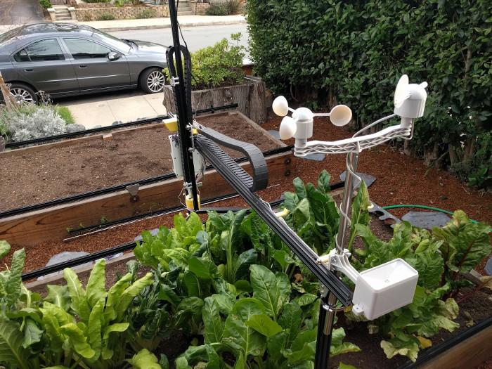 Có robot này, bạn không lo thiếu rau sạch ăn hàng ngày.