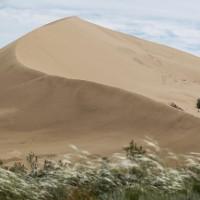 Đồi cát biết hát khiến giới khoa học ngỡ ngàng