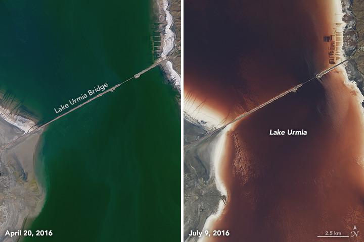 Ảnh vệ tinh cho thấy nước hồ có màu xanh lục hồi tháng 4, màu đỏ thẫm vào tháng 7.
