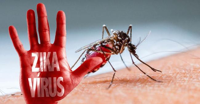 Sức khỏe đời sống-Bỉ ghi nhận 32 trường hợp nhiễm virus Zika