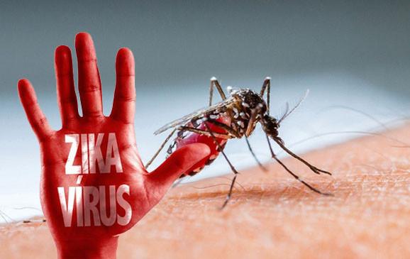Người dân hạn chế đi du lịch tới các khu vực nhiễm bệnh, đặc biệt là vùng Nam Mỹ.