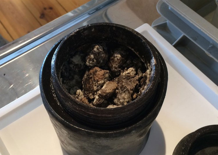 Pho mát được bảo quản trong một hũ nhỏ màu đen.