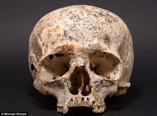 Người đã tái tạo lại Ava từ hộp sọ được tìm thấy ở Achavanich là Hew Morrison - một chuyên gia pháp y.