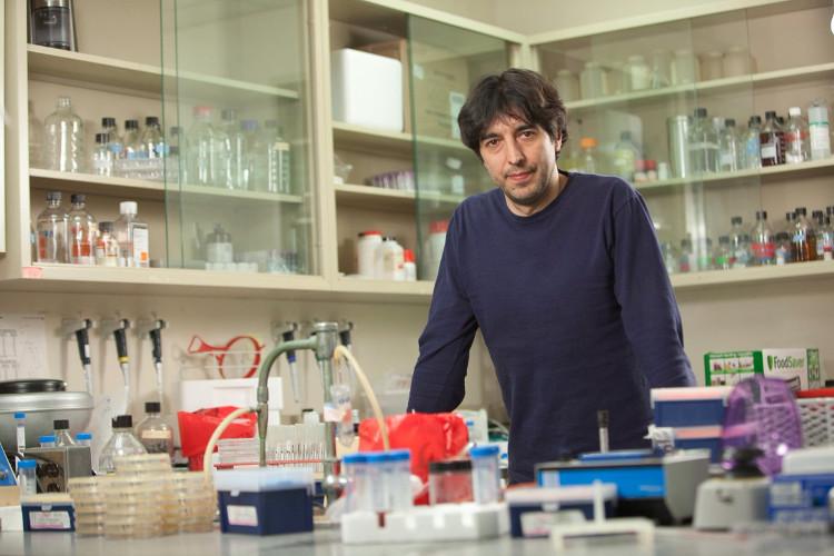 Giáo sư Longo lần đầu tiên sử dụng phương pháp bỏ đói khối u vào năm 2012.