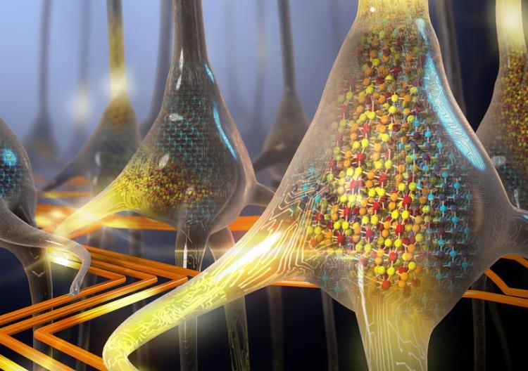 Neuron nhân tạo của IBM.