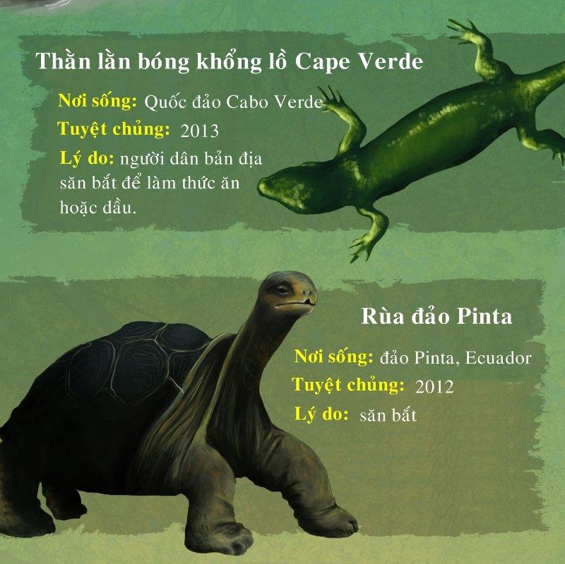 Rùa đảo Pinta tuyệt chủng do bị săn bắt quá mức.