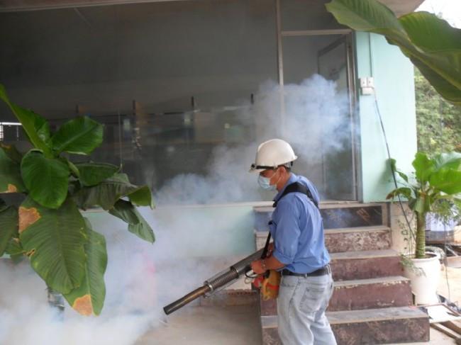 Muỗi Aedes aegypti được cho là trung gian chính chịu trách nhiệm cho việc lây lan đại dịch Zika.