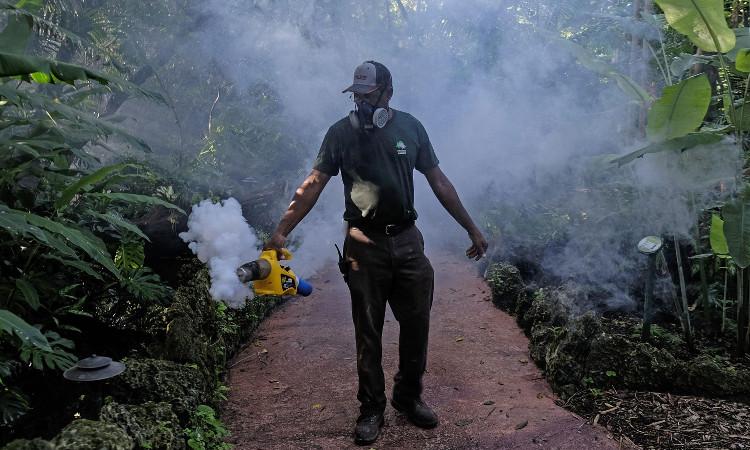 Một cán bộ vệ sinh đang dùng bình xịt để diệt muỗi tại bang Miami.