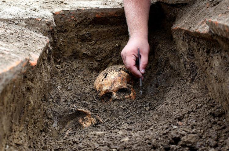 Các nhà khoa học đang tiến hành khai quật.