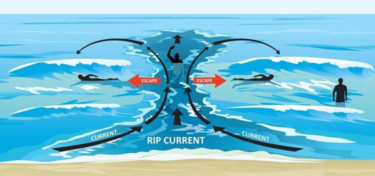 Nước bị đánh vào bờ sẽ chảy theo dòng được gọi là dòng chảy rút xa bờ.