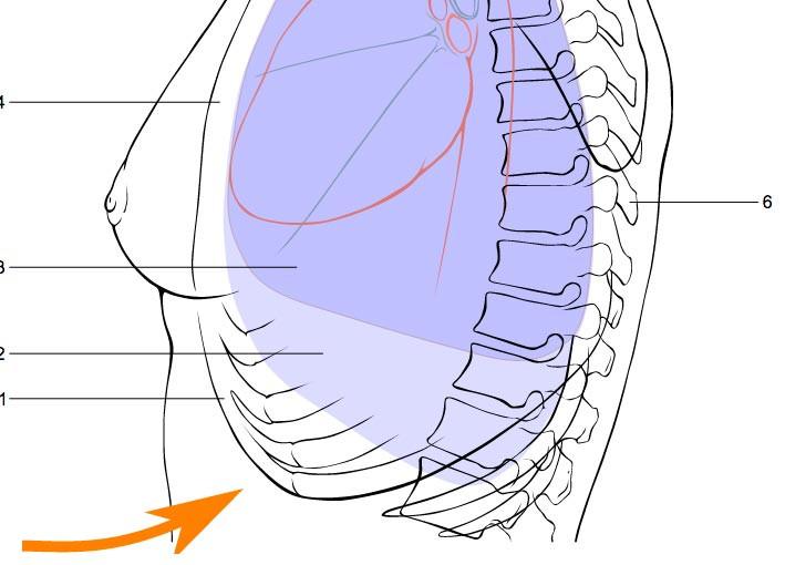 Có thể dùng phương pháp sơ cứu Heimlich để tự lấy dị vật trong cổ họng của mình.