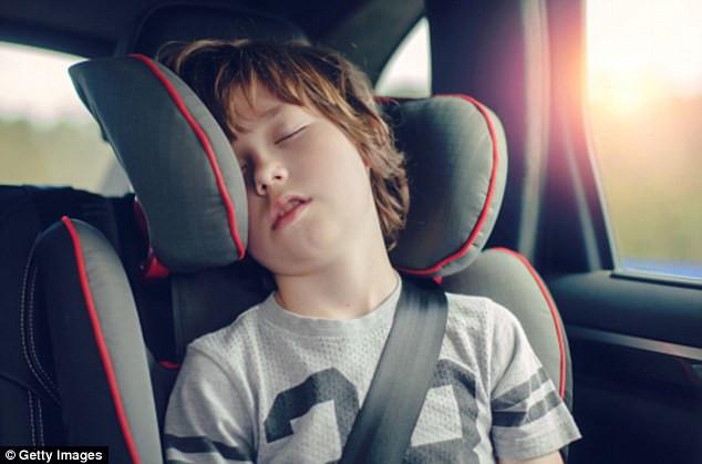 Dù ốm yếu hay khỏe mạnh, bạn vẫn có thể bị say xe.