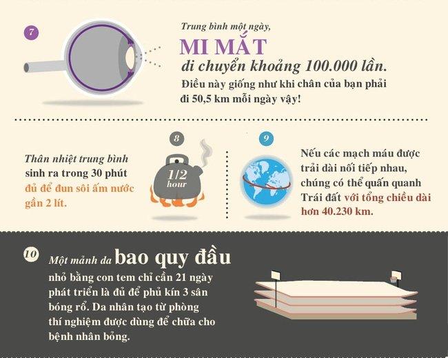 Trung bình một ngày mi mắt di chuyển khoảng 100.000 lần.