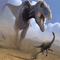 Phát hiện hộp sọ 1,1 tấn còn nguyên vẹn của khủng long bạo chúa