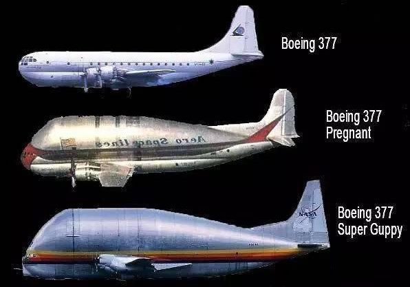 """Thiết kế đặc biệt của dòng máy bay """"cá bảy màu""""."""