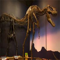Tranh cãi về loài khủng long chưa từng tồn tại