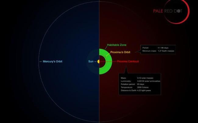 Hình đồ họa so sánh với quỹ đạo của các hành tinh xung quanh Proxima Centauri (Proxima b) với các vùng khác trong hệ Mặt trời.