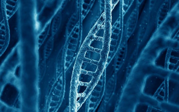 Giá thành của việc tổng hợp ADN đã giảm xuống đáng kể trong vòng một thập kỉ vừa rồi.