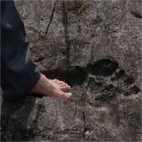 Phát hiện dấu chân người khổng lồ hóa thạch tại miền Tây Trung Quốc