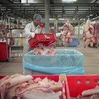Chất phụ gia thực phẩm gelatin được sản xuất thế nào?