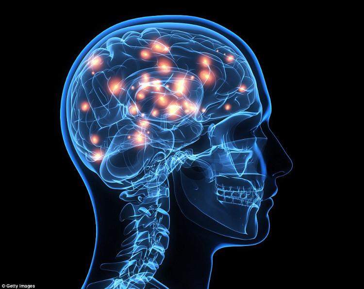 Có sự khác nhau giữa sóng não người thông minh và người bình thường.