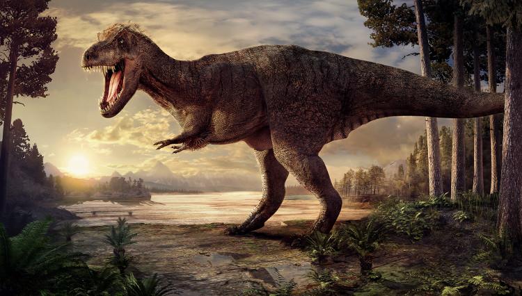 Đồ họa tái hiện hình dáng khủng long bạo chúa Trix sinh sống cách đây 66 triệu năm.