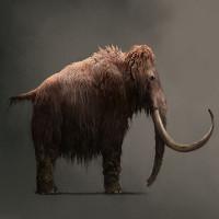 Những lý do khiến việc hồi sinh động vật đã tuyệt chủng khó hơn chúng ta tưởng tượng