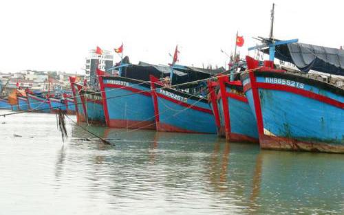 Nhiều tàu thuyền đã vào bờ neo đậu ở Khánh Hòa.