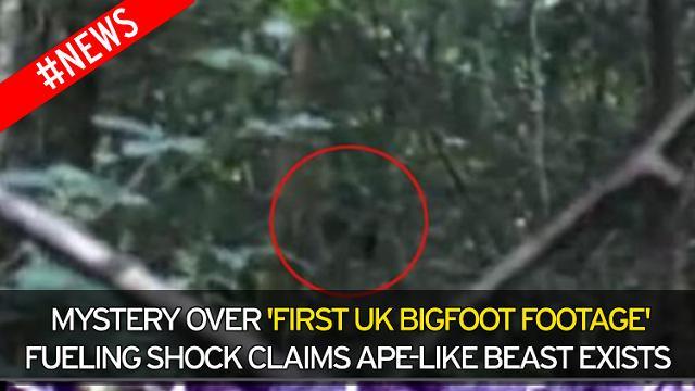 Jason tin rằng, đây là lần đầu tiên hình ảnh Bigfoot xuất hiện ở Anh.
