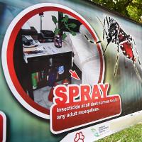 Singapore: Virus Zika lây truyền trong nước