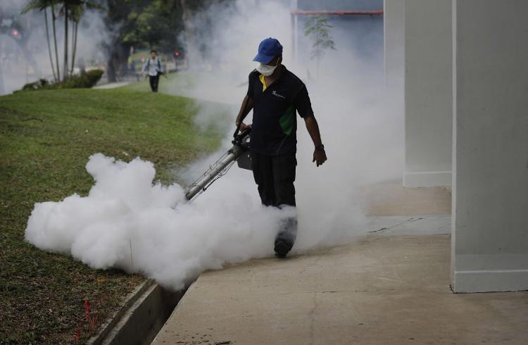 Singapore đã bắt đầu chiến dịch diệt muỗi sau khi phát hiện hàng chục ca nhiễm virus Zika ở nước này.