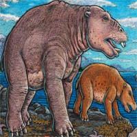 """Tìm thấy hóa thạch hà mã cổ đại được mệnh danh """"máy hút bụi"""""""