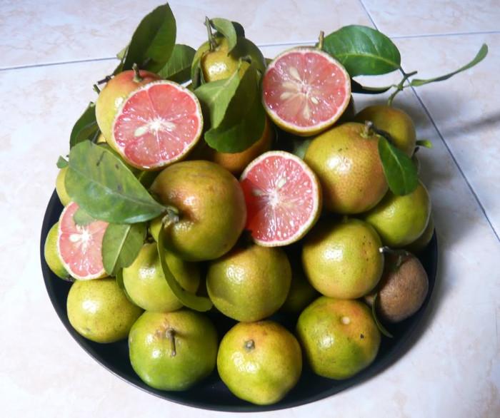Chanh đào chứa nhiều vitamin A, vitamin C.