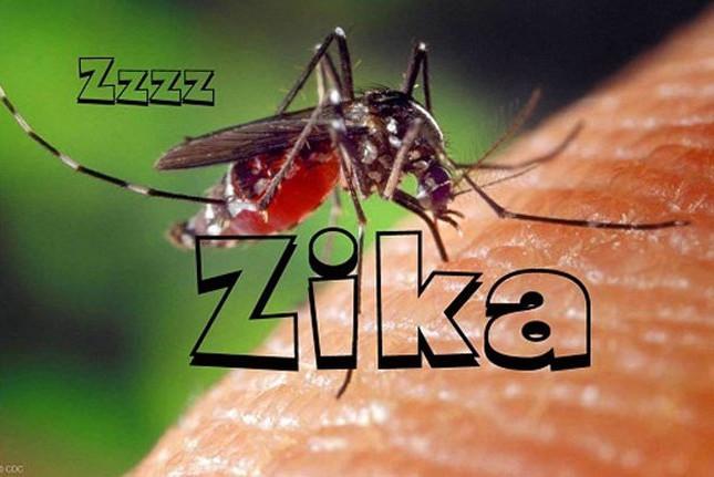 Trên thế giới đã có 72 quốc gia và vùng lãnh thổ có sự lưu hành của virus này.