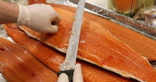 Cá hồi nuôi là thực phẩm độc hại nhất thế giới?