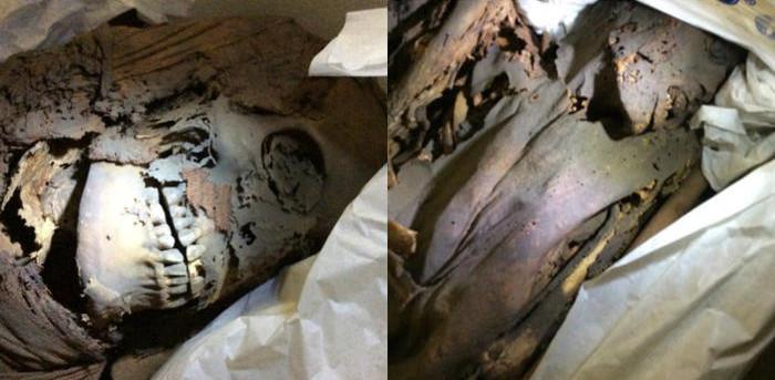 Nguyên nhân cái chết của xác ướp Ai Cập cổ đại có thể là do nhiễm trùng và ung thư.