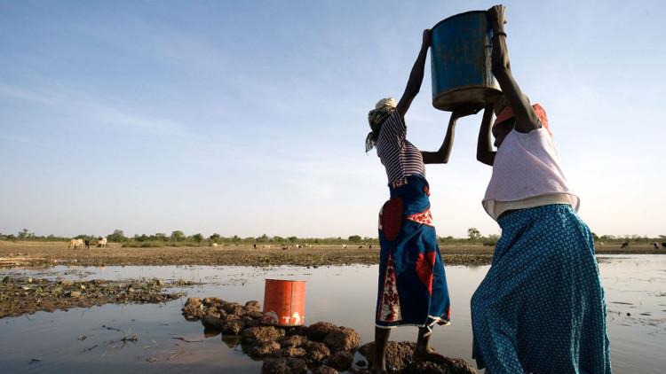 Chỉ cần cung cấp cho nông dân phương tiện lọc nước là đủ tiễn đưa giun chỉ.