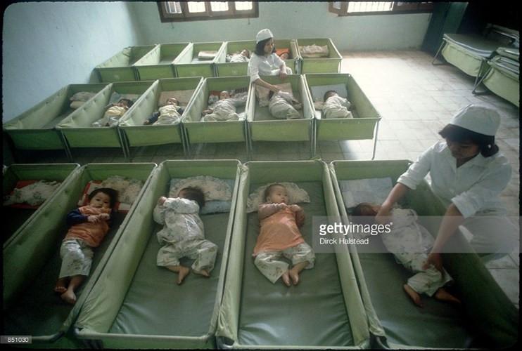 Trẻ sơ sinh tại một trại trẻ mồ côi ở Hải Phòng.