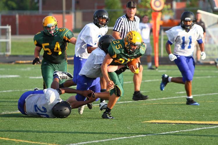 Con út thường có xu hướng tham gia vào các môn thể thao nguy hiểm như bóng bầu dục hay đấu vật.