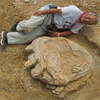 Phát hiện dấu chân khủng long khổng lồ tại sa mạc Mông Cổ