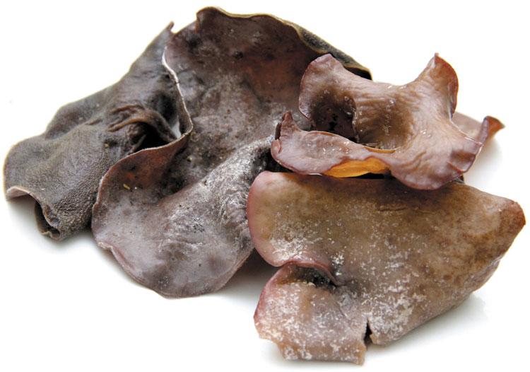 Mộc nhĩ biến chất thì phần tai sẽ toét ra và dính vào nhau, rải rác có những chấm đen, mất tính đàn hồi, ngửi thấy mùi chua, hôi.