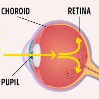 """Tại sao khi chụp ảnh mắt của bạn lại """"đỏ quạch"""" trông như """"ma cà rồng""""?"""
