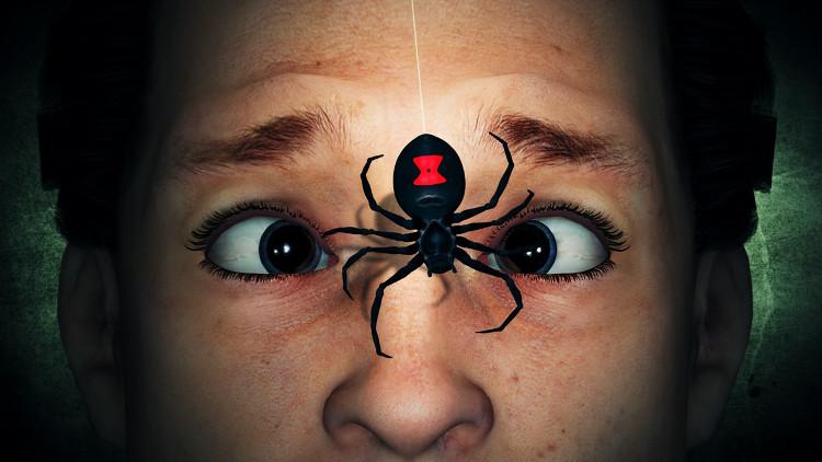 Nhện góa phụ đen là loại nhện độc nhất thế giới.
