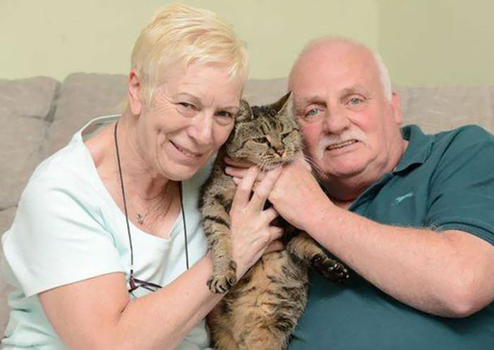 Vợ chồng Liz và Ian Finlay chia sẻ, họ đã phát hiện ra mèo Nutmeg vào năm 1990.