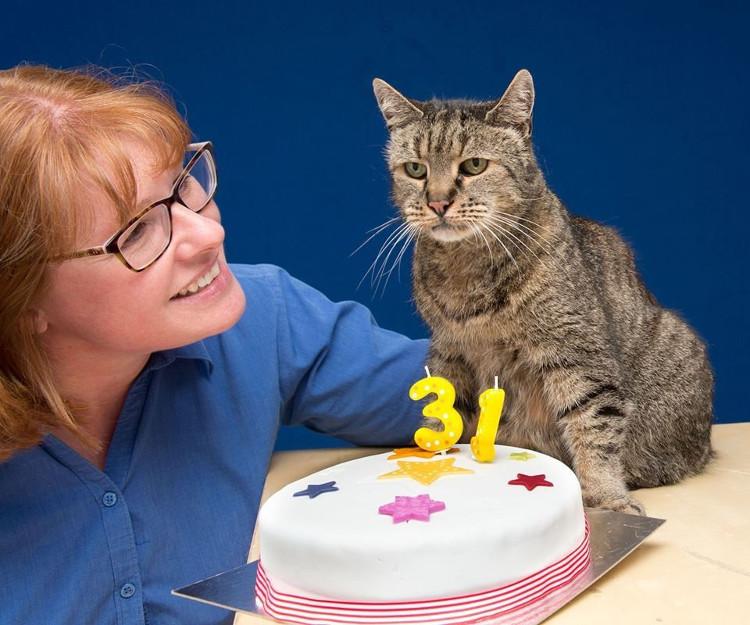 Mèo Nutmeg vẫn đang chờ các nhà khoa học xét nghiệm để xác nhận nó là chú mèo có tuổi thọ cao nhất thế giới còn sống.