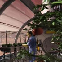 """""""Vườn sao Hỏa - Martian Gardens"""" giúp nhà khoa học tìm ra cách trồng rau trên sao Hỏa"""