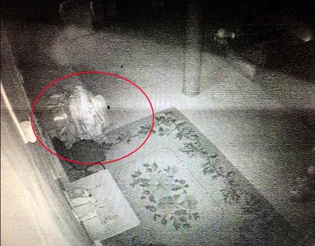 Hình ảnh thu từ camera giám sát cho thấy có bóng người trong cung điện của Lạt Ma Dashi Dorzho.