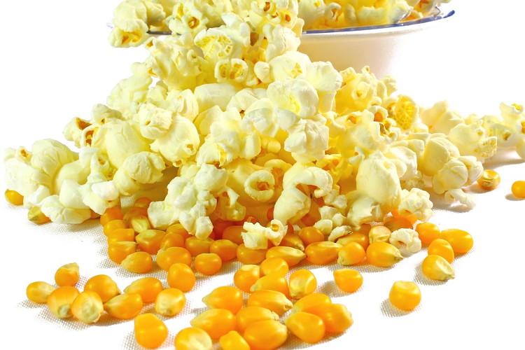 Hạt ngô được cấu tạo bởi ba phần: vỏ, cùi và nhân.