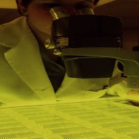 Khởi động dự án thế kỷ lập bản đồ tế bào của con người