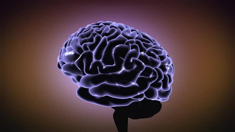 Não phụ nữ có thể lớn hơn vào thời kỳ rụng trứng.